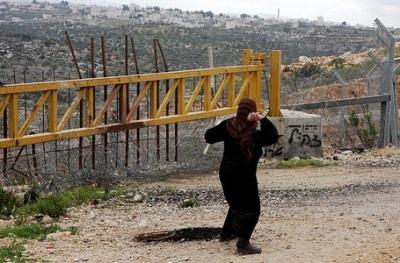palestine2009
